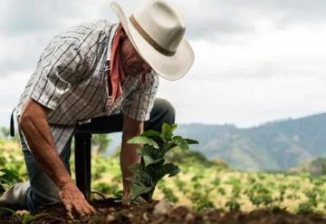 Gobierno Federal garantiza productividad hidroagrícola ante covid-19