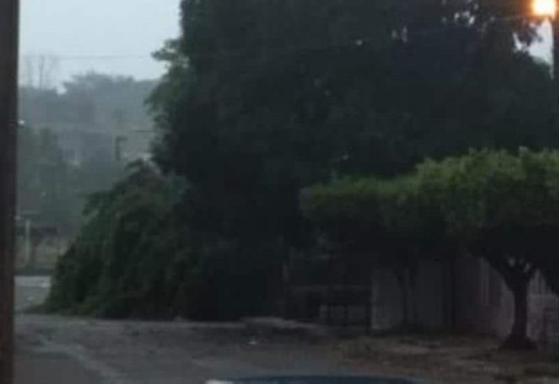 Fuertes vientos causan destrozos en Teapa
